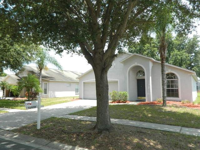 12910 Kings Lake Drive, Gibsonton, FL 33534 (MLS #T3119423) :: Dalton Wade Real Estate Group