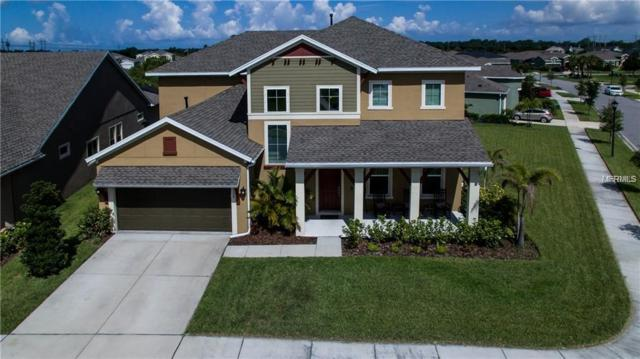 6330 Havensport Drive, Apollo Beach, FL 33572 (MLS #T3119518) :: Dalton Wade Real Estate Group