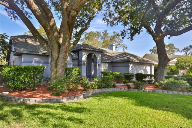 15122 Craggy Cliff Street, Tampa, FL 33625 (MLS #T3119523) :: Cartwright Realty