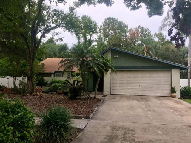 15921 Country Farm Place, Tampa, FL 33624 (MLS #T3119534) :: G World Properties