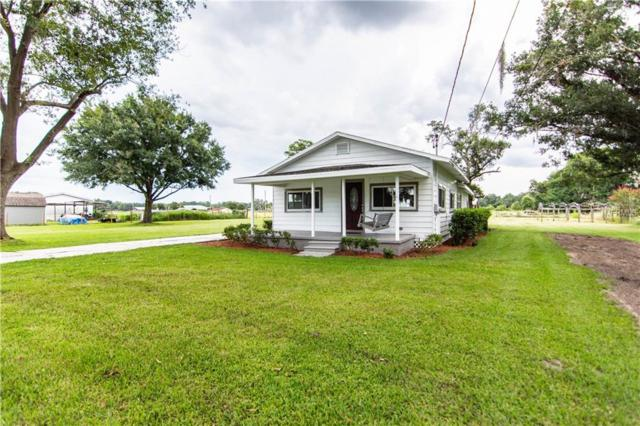 4502 Pippin Road, Plant City, FL 33567 (MLS #T3119536) :: Gate Arty & the Group - Keller Williams Realty