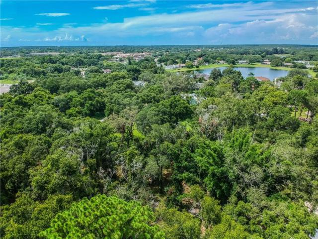 00 Ardonis Road, New Port Richey, FL 34654 (MLS #T3119541) :: The Duncan Duo Team