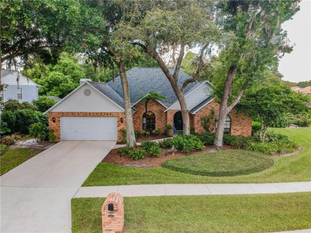2614 Brooker Trace Lane, Valrico, FL 33596 (MLS #T3119555) :: Team Bohannon Keller Williams, Tampa Properties
