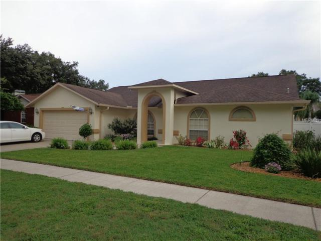 921 Daphne Drive, Brandon, FL 33510 (MLS #T3119586) :: Dalton Wade Real Estate Group