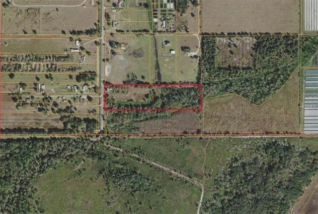 15228 Mcgrady Road, Wimauma, FL 33598 (MLS #T3119608) :: Mark and Joni Coulter   Better Homes and Gardens
