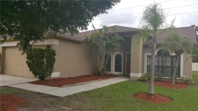 1810 Bell Ranch Street, Brandon, FL 33511 (MLS #T3119651) :: The Duncan Duo Team