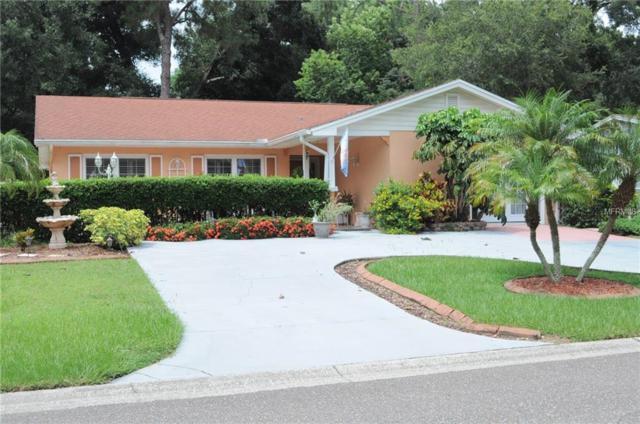 902 Pinemoor Court, Brandon, FL 33511 (MLS #T3119654) :: Dalton Wade Real Estate Group