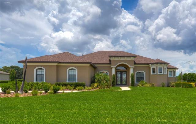 10915 Brice Tree Court, Lithia, FL 33547 (MLS #T3119697) :: Lovitch Realty Group, LLC