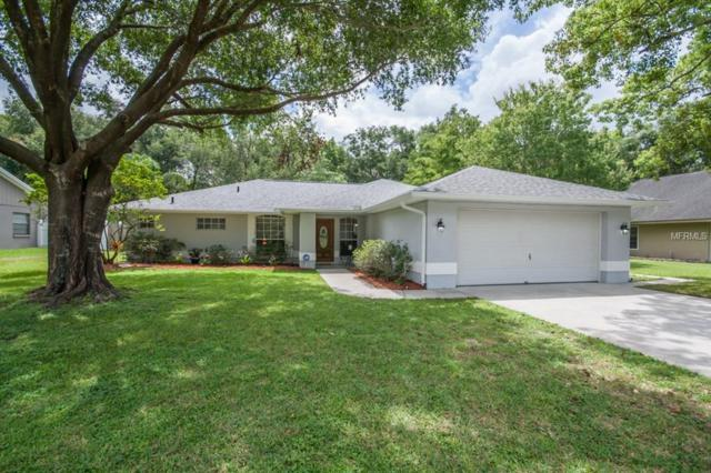 14203 Briarthorn Drive, Tampa, FL 33625 (MLS #T3119721) :: The Light Team