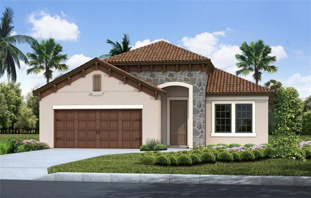 1616 Still River, Venice, FL 34293 (MLS #T3119731) :: Baird Realty Group