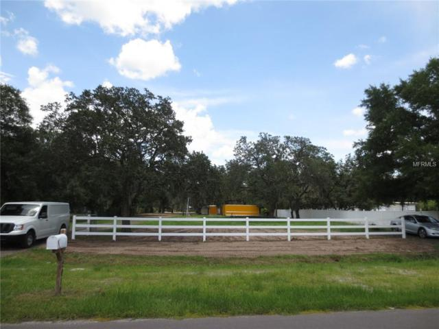 12010 Fawn Dale Drive, Riverview, FL 33569 (MLS #T3119772) :: Dalton Wade Real Estate Group