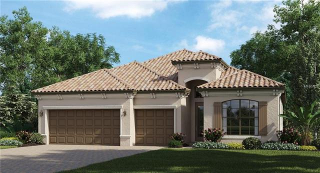 16234 Castle Park Terrace, Lakewood Ranch, FL 34202 (MLS #T3119774) :: TeamWorks WorldWide
