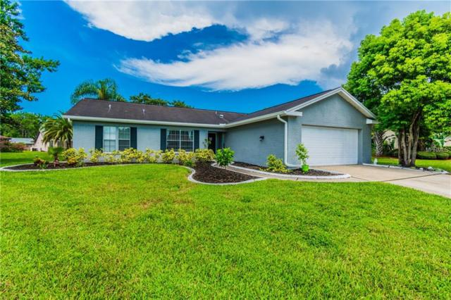 9824 Zaharias Court, New Port Richey, FL 34655 (MLS #T3119791) :: Gate Arty & the Group - Keller Williams Realty