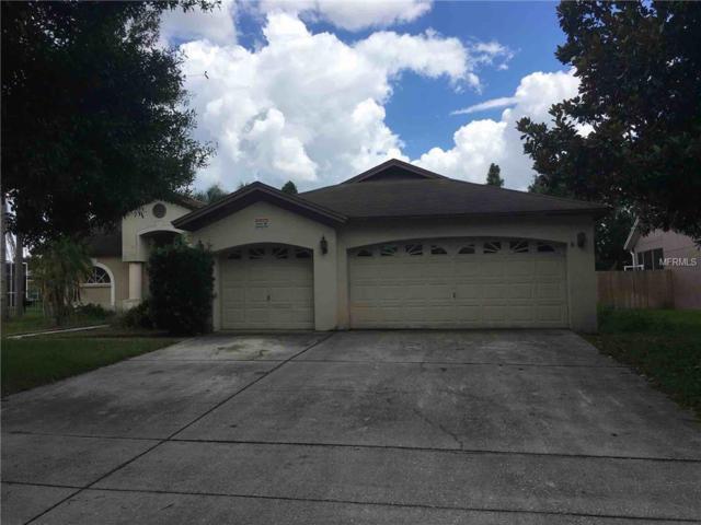11807 Tall Elm Court, Riverview, FL 33569 (MLS #T3119795) :: Dalton Wade Real Estate Group