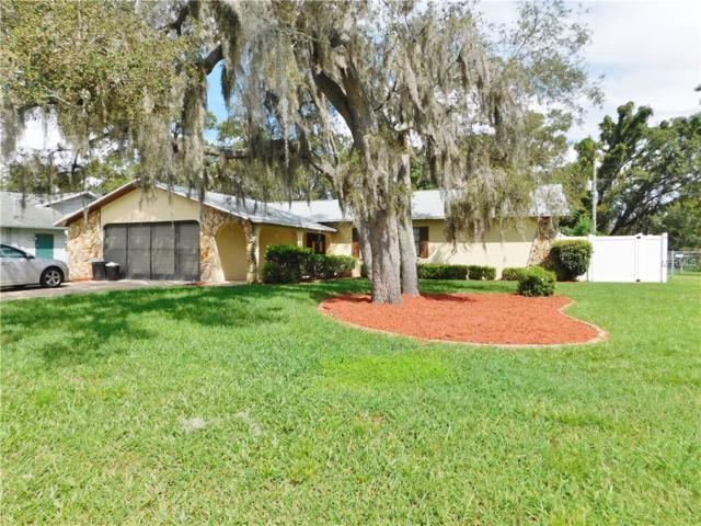 9043 Dupont Avenue, Spring Hill, FL 34608 (MLS #T3119802) :: Dalton Wade Real Estate Group