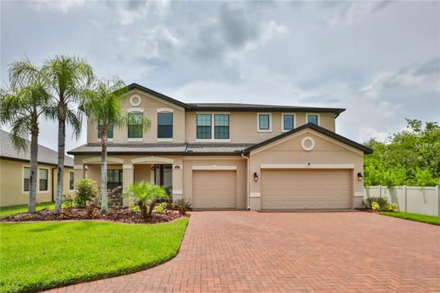 13217 Sunset Shore Circle, Riverview, FL 33579 (MLS #T3119811) :: Lovitch Realty Group, LLC
