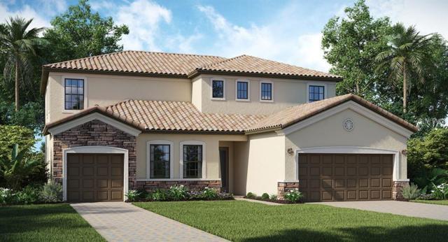 12018 Medley Terrace, Bradenton, FL 34211 (MLS #T3119820) :: Zarghami Group
