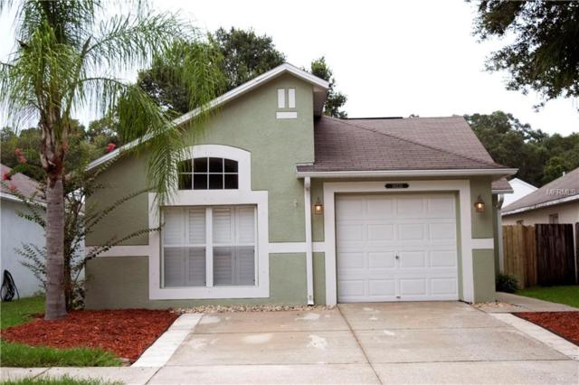 30233 Double Drive, Wesley Chapel, FL 33545 (MLS #T3119843) :: Gate Arty & the Group - Keller Williams Realty