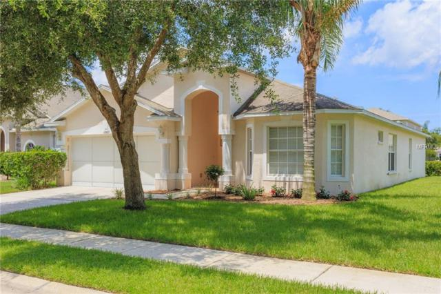 12431 Southbridge Terrace, Hudson, FL 34669 (MLS #T3119931) :: Team Virgadamo