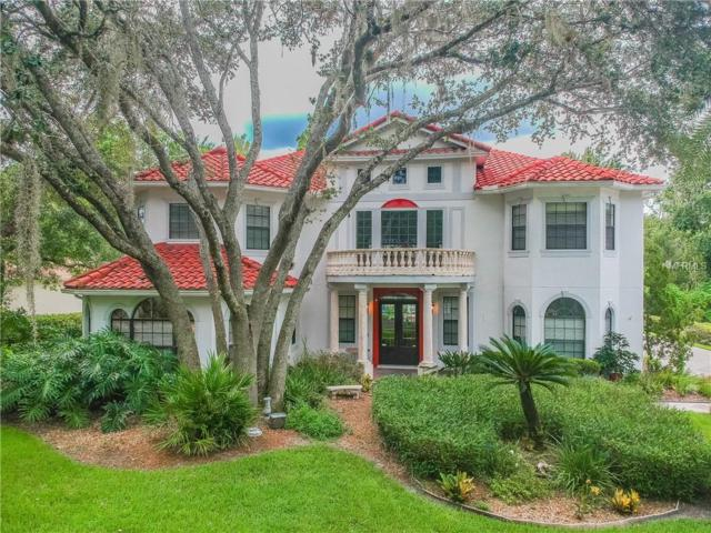 5308 Witham Court, Tampa, FL 33647 (MLS #T3119946) :: Lock and Key Team