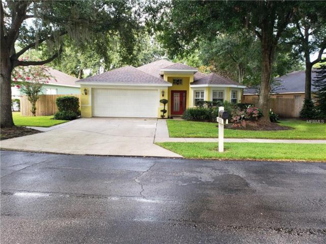9033 Cliff Lake Lane, Tampa, FL 33614 (MLS #T3120058) :: Baird Realty Group