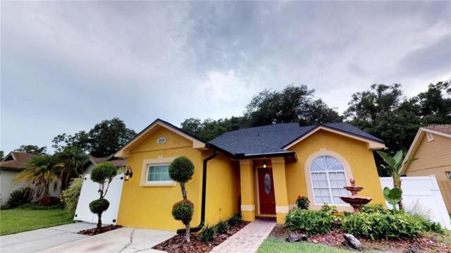 12810 Dunhill Drive, Tampa, FL 33624 (MLS #T3120097) :: Jeff Borham & Associates at Keller Williams Realty