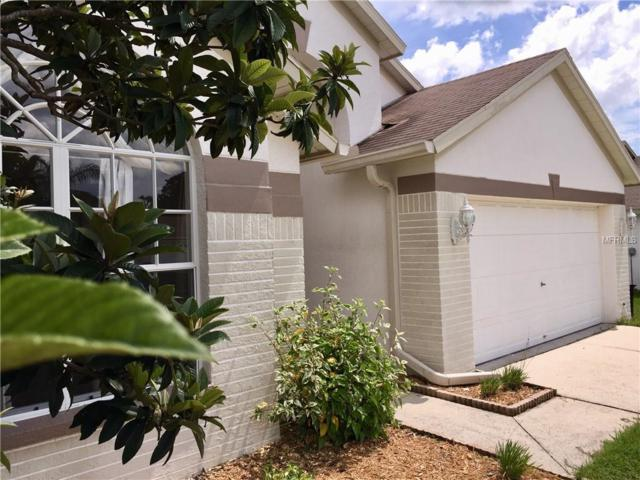 24300 Rolling View Court, Lutz, FL 33559 (MLS #T3120106) :: Lock and Key Team