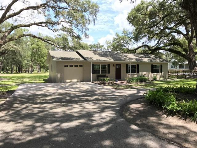30997 Crocodile Lane, San Antonio, FL 33576 (MLS #T3120127) :: The Duncan Duo Team
