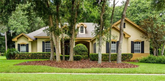 6119 Audubon Manor Boulevard, Lithia, FL 33547 (MLS #T3120210) :: The Brenda Wade Team