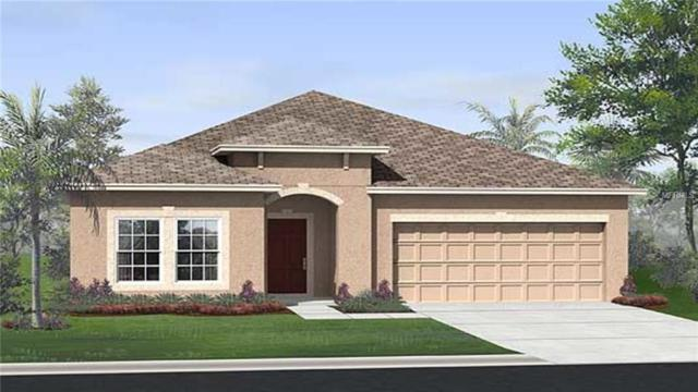 2750 Creekmore Court, Kissimmee, FL 34746 (MLS #T3120214) :: The Duncan Duo Team