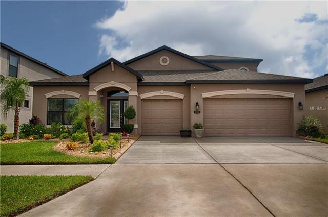 11520 Scarlet Ibis Place, Riverview, FL 33569 (MLS #T3120339) :: KELLER WILLIAMS CLASSIC VI