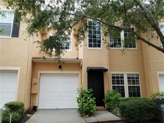 16314 Parkstone Palms Court, Tampa, FL 33647 (MLS #T3120388) :: KELLER WILLIAMS CLASSIC VI