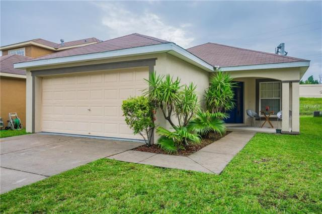 5434 Turtle Crossing Loop, Tampa, FL 33625 (MLS #T3120391) :: White Sands Realty Group