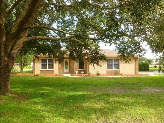 32008 Glenhollow Road, Wesley Chapel, FL 33543 (MLS #T3120411) :: The Light Team