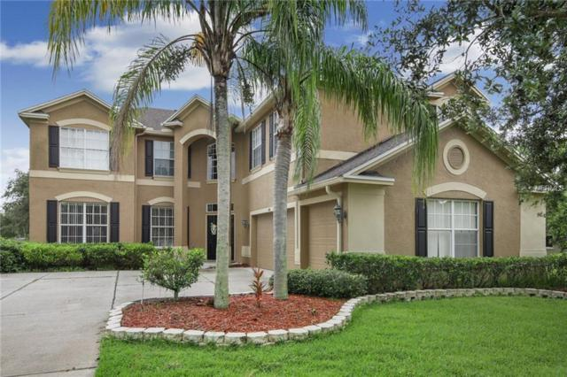 4310 Harbor Lake Drive, Lutz, FL 33558 (MLS #T3120418) :: White Sands Realty Group