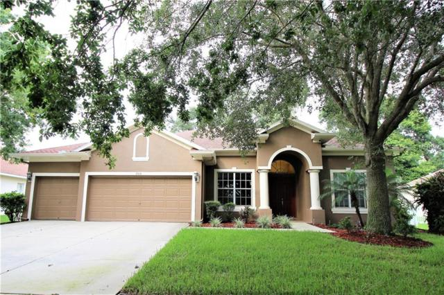 2416 Blue Stone Court, Valrico, FL 33594 (MLS #T3120421) :: White Sands Realty Group