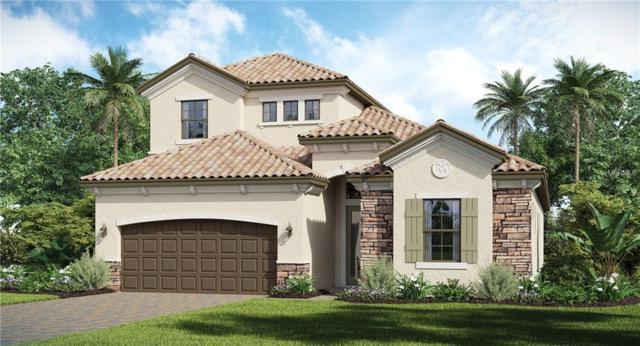 12229 Perennial Place, Bradenton, FL 34211 (MLS #T3120572) :: Medway Realty