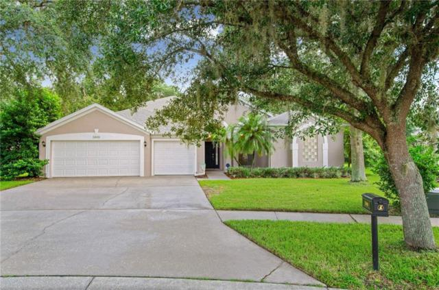 5909 Falconwood Place, Lithia, FL 33547 (MLS #T3120599) :: The Duncan Duo Team