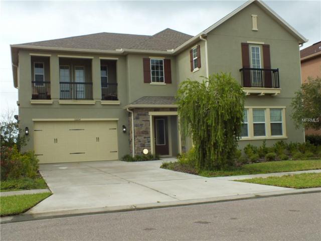 33204 Azalea Ridge Drive, Wesley Chapel, FL 33545 (MLS #T3120675) :: Team Bohannon Keller Williams, Tampa Properties