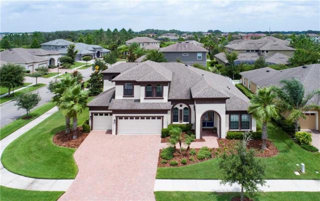 7050 Hatpin Loop, Wesley Chapel, FL 33545 (MLS #T3120702) :: Team Bohannon Keller Williams, Tampa Properties