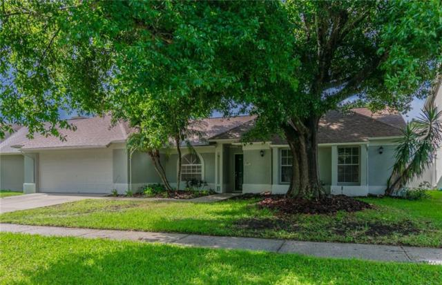 9733 Cypress Pond Avenue, Tampa, FL 33647 (MLS #T3120788) :: Mark and Joni Coulter | Better Homes and Gardens