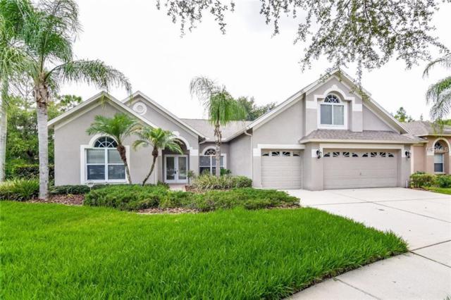 10209 Timberland Point Drive, Tampa, FL 33647 (MLS #T3120889) :: Team Bohannon Keller Williams, Tampa Properties