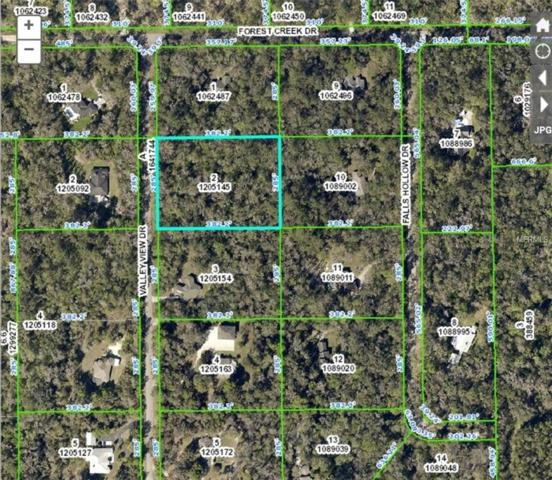Valley View Drive, Brooksville, FL 34601 (MLS #T3121036) :: The Duncan Duo Team
