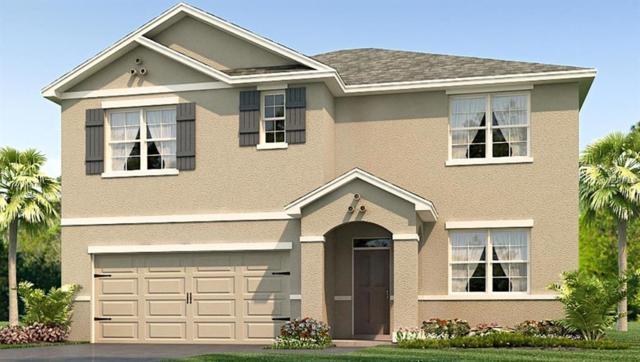 12001 Ledbury Commons Drive, Gibsonton, FL 33534 (MLS #T3121158) :: The Light Team