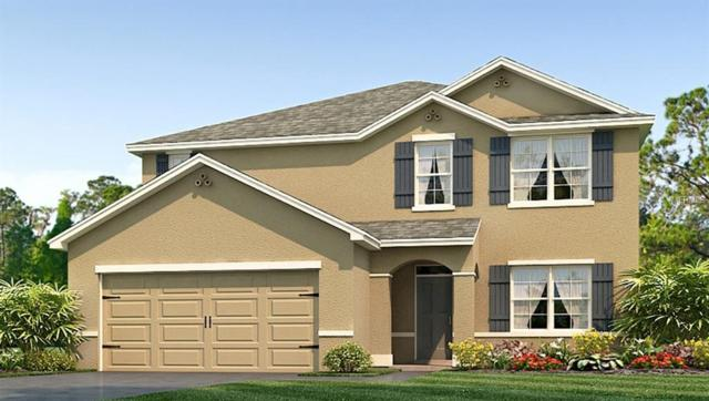 8121 Bilston Village Lane, Gibsonton, FL 33534 (MLS #T3121171) :: The Light Team