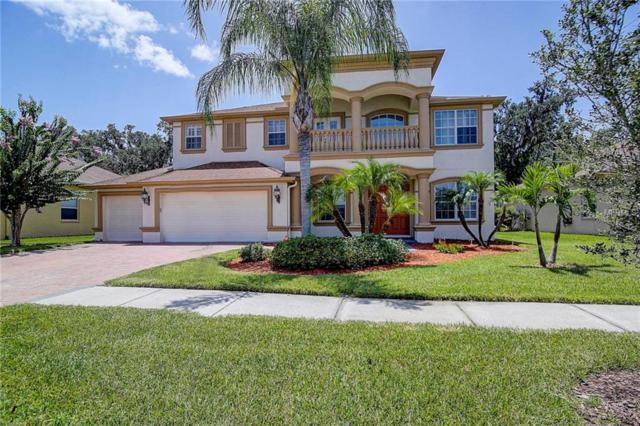 26738 Winged Elm Drive, Wesley Chapel, FL 33544 (MLS #T3121228) :: Team Bohannon Keller Williams, Tampa Properties