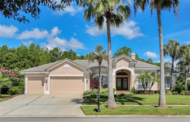 12027 Brewster Drive, Tampa, FL 33626 (MLS #T3121309) :: The Duncan Duo Team