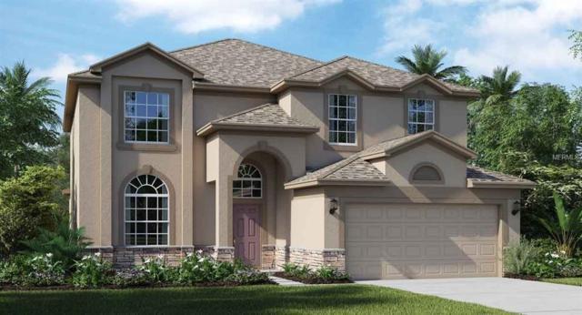 13743 Crest Lake Drive, Hudson, FL 34669 (MLS #T3121430) :: Griffin Group