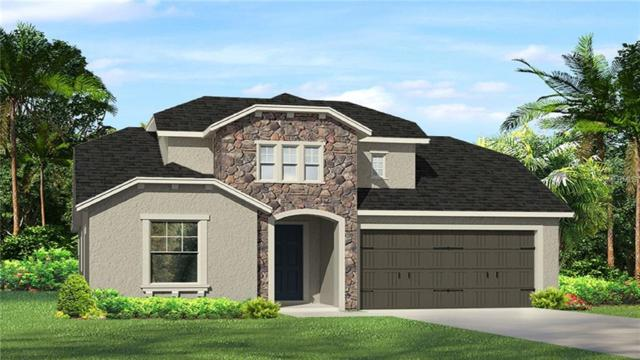 28916 Lucero Lane, Wesley Chapel, FL 33543 (MLS #T3121440) :: Team Bohannon Keller Williams, Tampa Properties