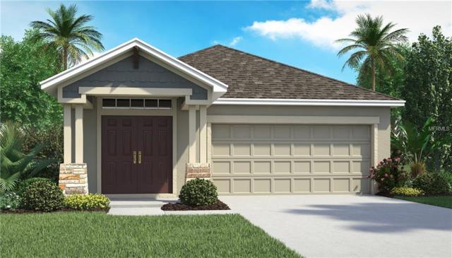 5423 Little Stream Lane #3114, Wesley Chapel, FL 33545 (MLS #T3121442) :: The Duncan Duo Team